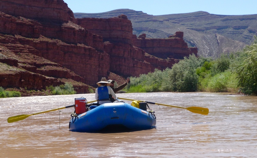 Two biologists in a blue whitewater raft performing call-playback surveys on the silty San Juan River.