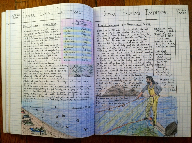 Pages from field notebook showing panga fisherman pulling in nets